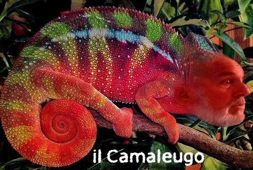 il Camaleugo